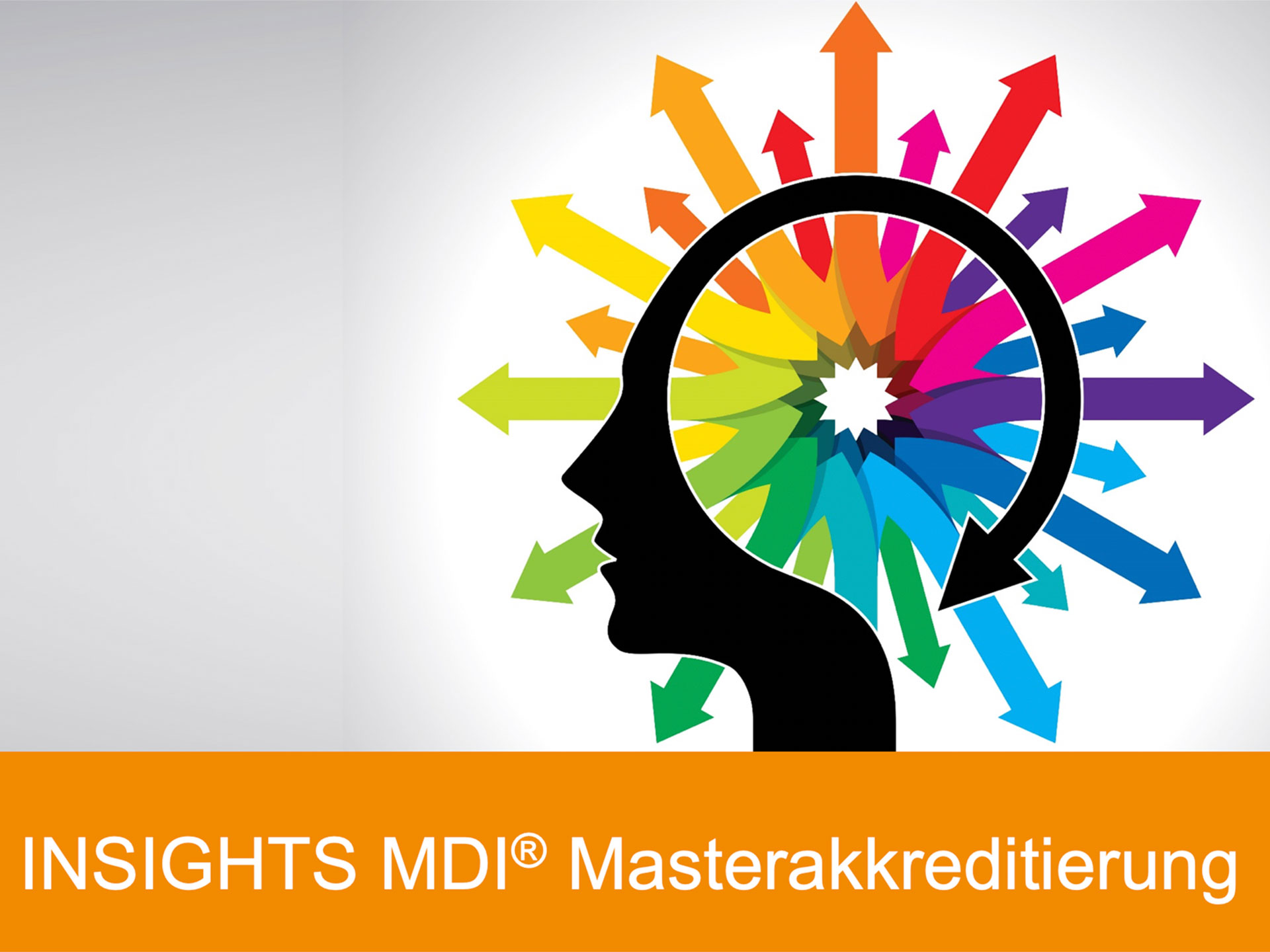 Insights MDI Masterakkreditierung